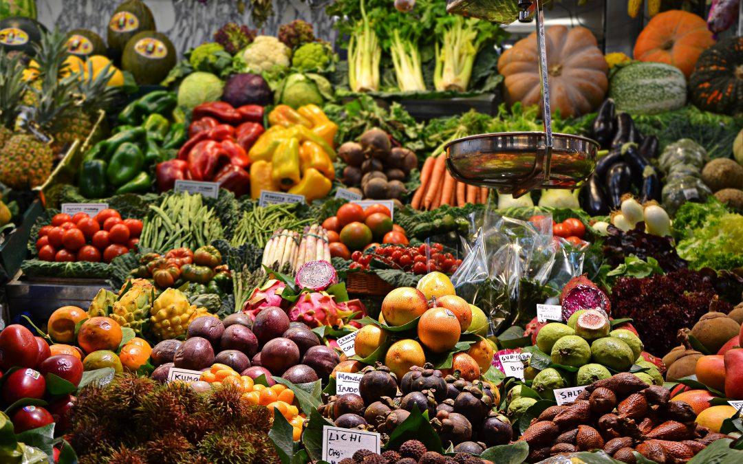 Projeto coletivo JPD 2017 – Alimentação: entre a escolha, o acesso e a distribuição